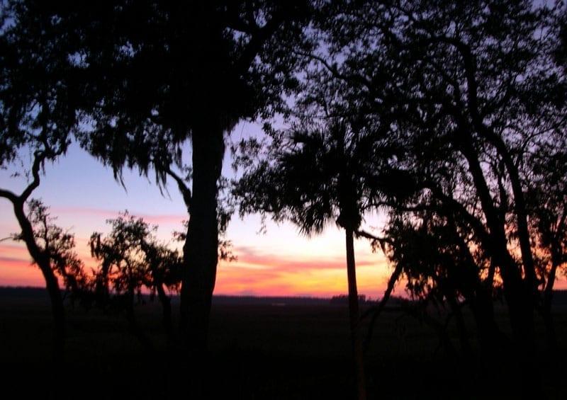 sunset-on-the-marsh-3